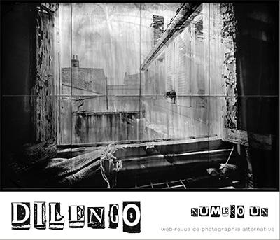 Dilengo01